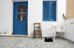 Black cat and house. Black cat sitting in front of traditional greek  house Stock Photography