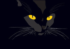 Black cat illustraion Royalty Free Stock Photos