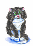 Black cat. Illustration black cat ,made watercolor . on white background Royalty Free Stock Images