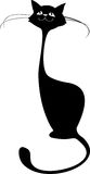 Black cat isolated on white Royalty Free Stock Photo