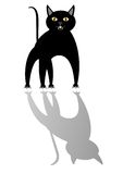 Black cat and its shadow.. Royalty Free Stock Image