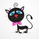 Black Cat, Kitten with Blue Eyes and  Pink Bow Tie Stock Photo