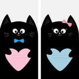 Black cat kitty family holding blue pink heart shape paper. Poster Notebook cover Composition book template. Cute cartoon characte Stock Images