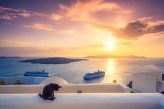 A black cat on a ledge at sunset at Fira town, with view of caldera, volcano and cruise ships, Santorini, Greece. Cloudy dramatic sky stock image