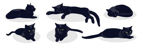 Black cat lies in various poses isolated on white background. stock illustration