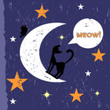 Black cat on the moon Stock Photography