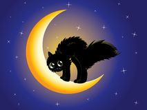 Black cat on moon Royalty Free Stock Images