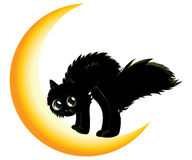 Black cat on moon Stock Photo