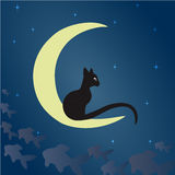 Black cat on the moon. A black cat sits on the moon and catches fish among the starry sky. Vector illustration suitable for illustrating mysteries, covert Stock Photos