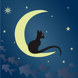 Black cat on the moon. A black cat sits on the moon and catches fish among the starry sky. Vector illustration suitable for illustrating mysteries, covert Royalty Free Stock Image