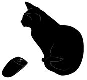 Black cat and mouse Stock Image