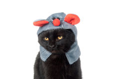 Black cat with mouse hat Royalty Free Stock Photo