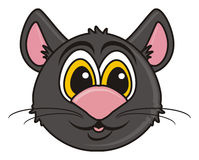Black cat muzzle Royalty Free Stock Photo