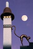 Black cat on a mysterious roof at the moonlight Stock Images