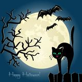 Black Cat On A Fence In Front Of The Moon Royalty Free Stock Image