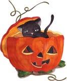 Black cat and orange pumpkin. The black cat inside a orange pumpkin on last October and first of November: Halloween Stock Images
