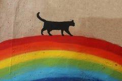 Black cat over the rainbow royalty free stock photo