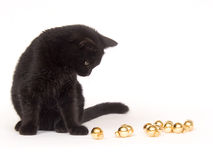 Black Cat Playing With Christmas Ornaments Stock Image