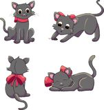 Black cat positions Stock Photography