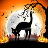 Black cat with pumpkin halloween on the full moon Royalty Free Stock Photos