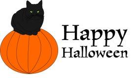 Black cat on pumpkin Stock Images