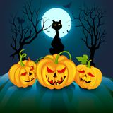 Black cat with pumpkin Halloween night Royalty Free Stock Photos