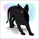 Black cat in a rage Royalty Free Stock Photography