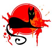 Black cat in a red frame stock photo