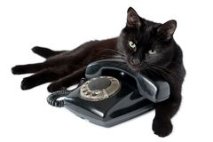 Black cat and retro black phone on a white. Black cat lying on a black retro phone, looking at the camera. Cat and vintage telephone isolated on white background stock photos