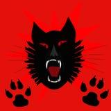 Black Cat Scream Stock Photo