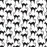Black cat seamless pattern. Cats repetitive texture. Halloween endless background. Vector illustration. Royalty Free Stock Images