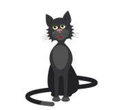 Black cat Stock Images