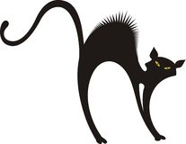 Black cat silhouette Stock Images