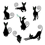 Black cat silhouette set Stock Image