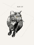 Black cat Sitting , iHand draw Sketch line art ,llustration . Black cat Sitting , iHand draw Sketch line art ,illustration Stock Photography