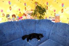 Black cat sleeping on the blue sofa Stock Photos