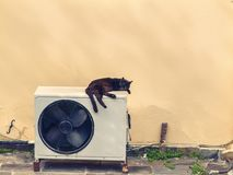 Black cat sleeps on a white air conditioner in the heat in the street of Greece. Concept royalty free stock image