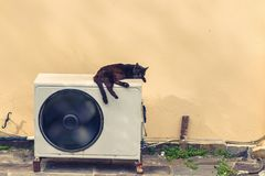 Black cat sleeps on a white air conditioner in the heat in the street of Greece. Concept royalty free stock photography