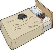 Black Cat with Snoring Woman. Single woman sleeping on bed with black cat Royalty Free Stock Images