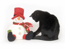 Black cat and snowman on white background Royalty Free Stock Photo