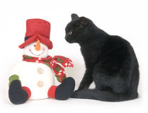 Black cat and snowman on white background Royalty Free Stock Image