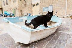 St. Julian`s bay on Malta. Black cat in St. Julian`s bay on Malta island. Beautiful animal in south Europe Stock Photos