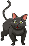 Black cat standing alone Stock Photography