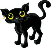 Black Cat. Stray black cat on a white background Royalty Free Stock Photo