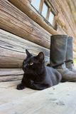 Black cat and tarpaulin boots_2 Royalty Free Stock Photos