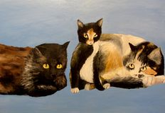 Black cat, tricolor cat and kitten sit together acrylic children`s artwork Royalty Free Stock Photography