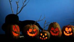 Black Cat Walking Along Halloween Pumpkins