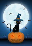 Black cat wearing witches hat sit on pumpkin head Royalty Free Stock Photos