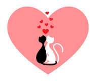Black cat and white cat Royalty Free Stock Photo