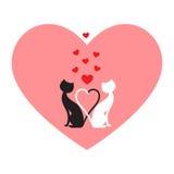 Black cat and white cat vector illustration